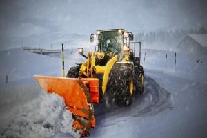 008139-ARP-Blog-Week-2_snow-3119721_1920